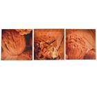 Часы-картина модульные «Грецкие орехи», 30 × 90 см