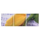 Часы-картина модульные «Жёлтый тюльпан», 30 × 90 см