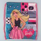 Мешок для обуви 430х340х10 мм Barbie, BRDB-MT1-883