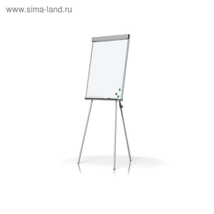 Флипчарт магнитно-маркерный на треноге, 70х100 см