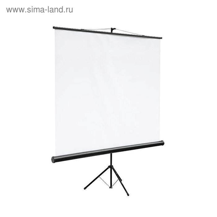 Экран Digis мобильный 160х160, (DSKC-1101)