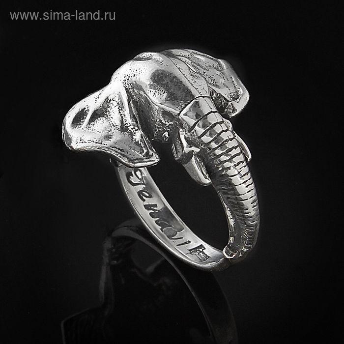 """Кольцо """"Гуандо"""", размер 18, черненое серебро"""