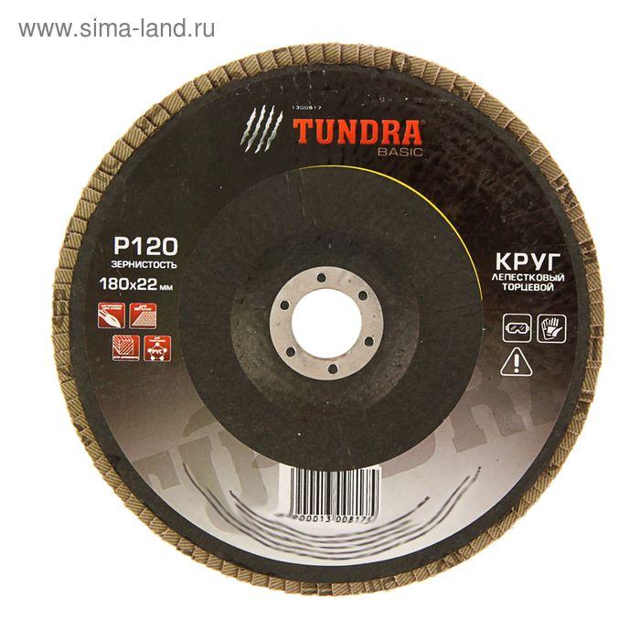 Круг лепестковый торцевой TUNDRA, 180 х 22 мм, Р120