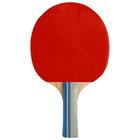 Ракетка для настольного тенниса BLACKWOOD, в чехле