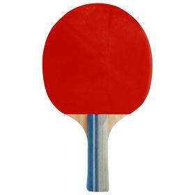 Ракетка для настольного тенниса BLACKWOOD, в чехле Ош