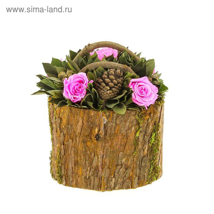"""Декоративная композиция """"Барк"""" корзиночка, 18 х 18 х 19 см, розовый"""