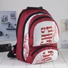Рюкзак молодёжный, 2 отдела на молниях, 2 наружных кармана, цвет красный