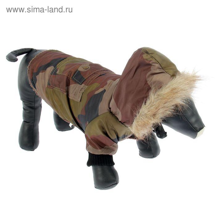 Куртка с капюшоном, отделка мехом, на синтепоне, размер M