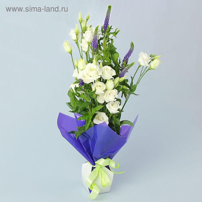 Коробка для цветов 2в1, 12х17 см, сборная, фиолетовый