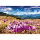 Фотообои самоклеящиеся «Горные цветы», 2 листа, 100 × 140 см