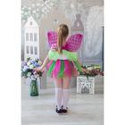 Карнавальный набор «Бабочка», 2 предмета: крылья, юбка, 4-6 лет