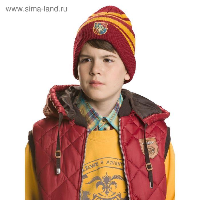 Шапка для мальчиков, размер 52-53, цвет бордовый  BQ474