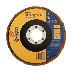 Круг лепестковый торцевой TUNDRA, 115 х 22 мм, Р120 Ош
