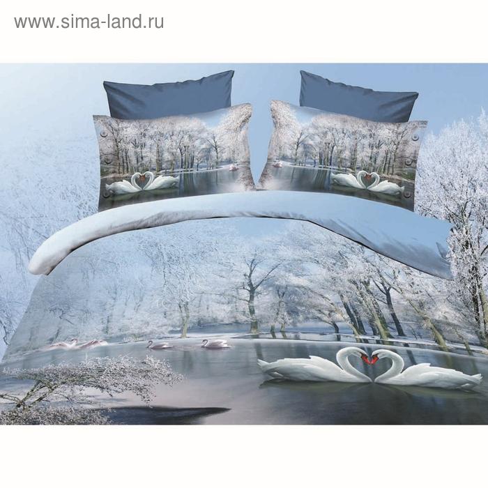 """Постельное бельё """"Этель 3Д"""" евро Зимний сон 200*220 см, 220*240 см, 50*70 + 5 см - 2 шт."""