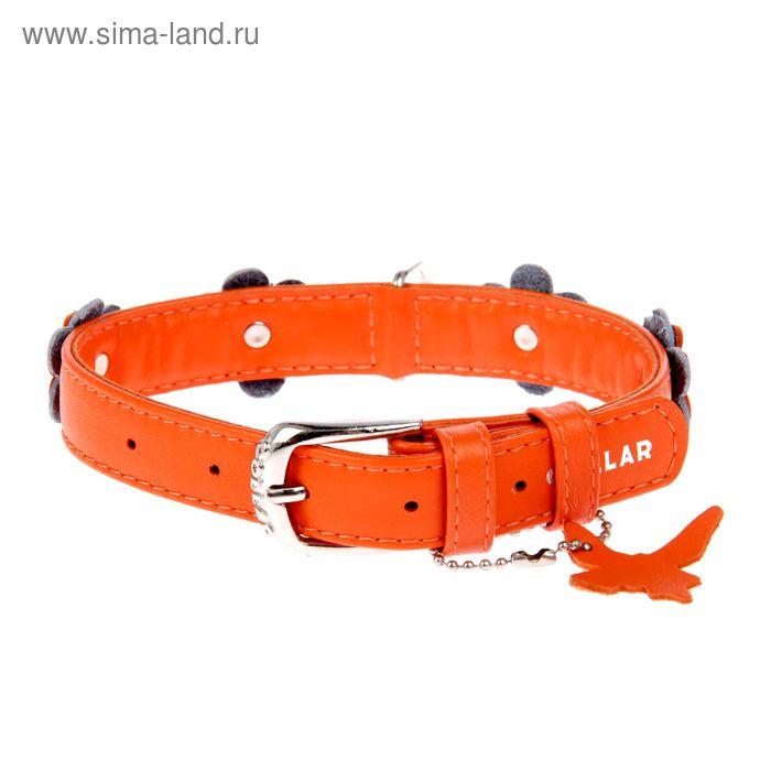 Ошейник украшенный CoLLaR Glomour аппликация 30-39 х 2 см, оранжевый