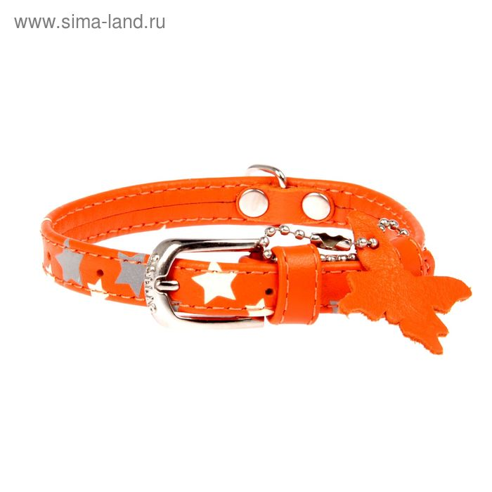 "Ошейник CoLLaR GLAMOUR с узором ""Звёздочка"",21-29 х 1,2 см, оранжевый"