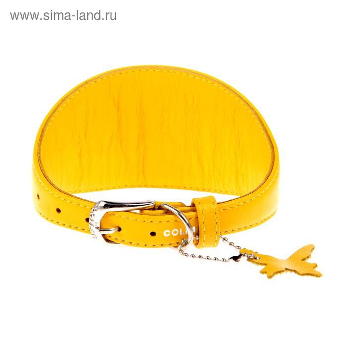 Ошейник  неукрашенный CoLLaR Glomour для борзых собак, 29-35 х 1,5 см, желтый