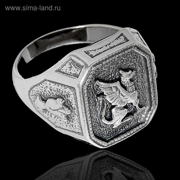 "Кольцо ""Грифон"", размер 21, цвет черненое серебро"