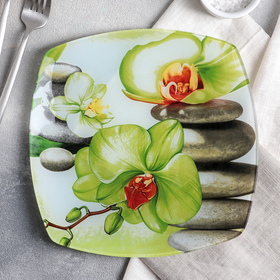 """Dining plate 23 cm """"Green Orchid"""""""
