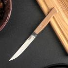 Нож для овощей, длина 21 см, режущая часть 11,5 см, на деревянной ручке