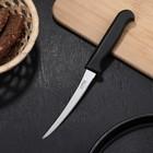 Нож «Элегант» для овощей, длина 22 см, лезвие 12 см
