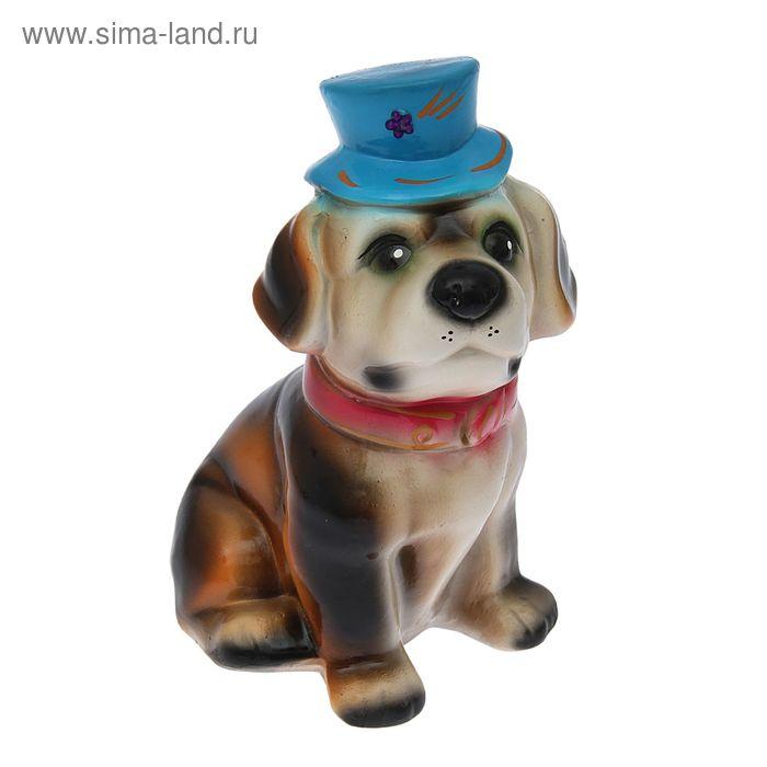 """Копилка """"Барбоскин в шляпке"""" глянец, микс"""