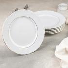 Набор тарелок, d=25 см, 6 шт - фото 1658173