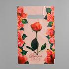 """Пакет """"Розовая дымка"""", полиэтиленовый с вырубной ручкой, 20х30 см, 30 мкм"""