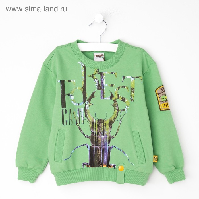 Джемпер (толстовка) для мальчика, рост 98 см (56), цвет светло-зелёный (арт. ZB 09177-G1_Д)