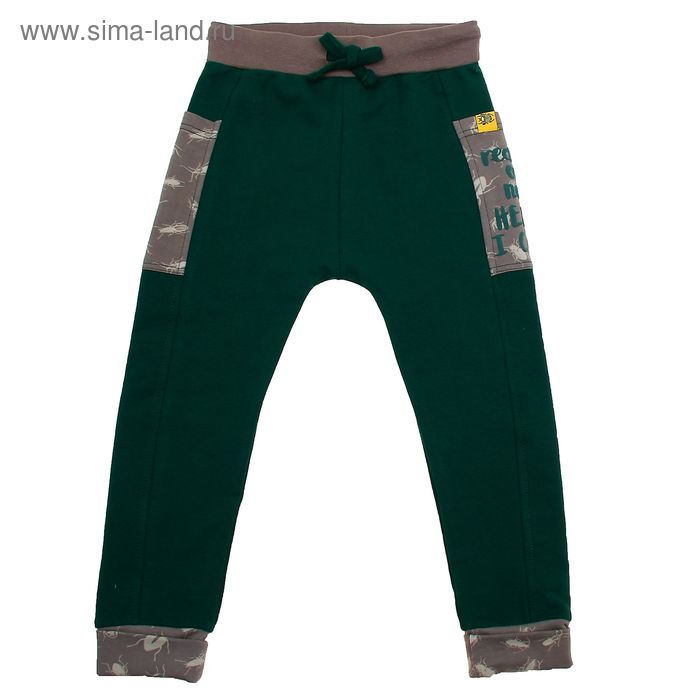 Брюки для мальчика, рост 110 см (60), цвет зелёный (арт. ZB 10245-G1_Д)