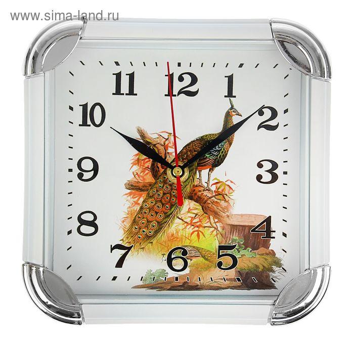 """Часы настенные квадратные """"Павлин"""", с закруглёнными краями, белый обод, малые"""