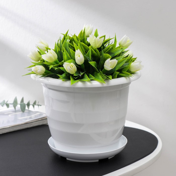 Flower pot is 2 years, colour white