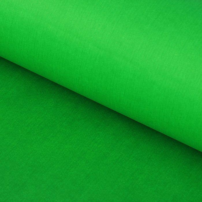 """Бумага тишью """"Зелёная"""", 50 х 76 см, 24 шт."""