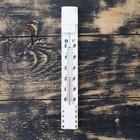 Термометр (0°С<Т<+50°С), упаковка пакет