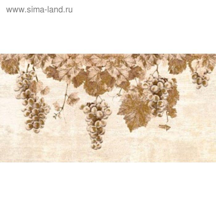 Вставка керамическая 50х25см Тоскана коричневый 10-03-15-718
