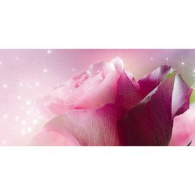 Декор 50х25см Арома розовый Ланком 10-05-41-619-1 Ош