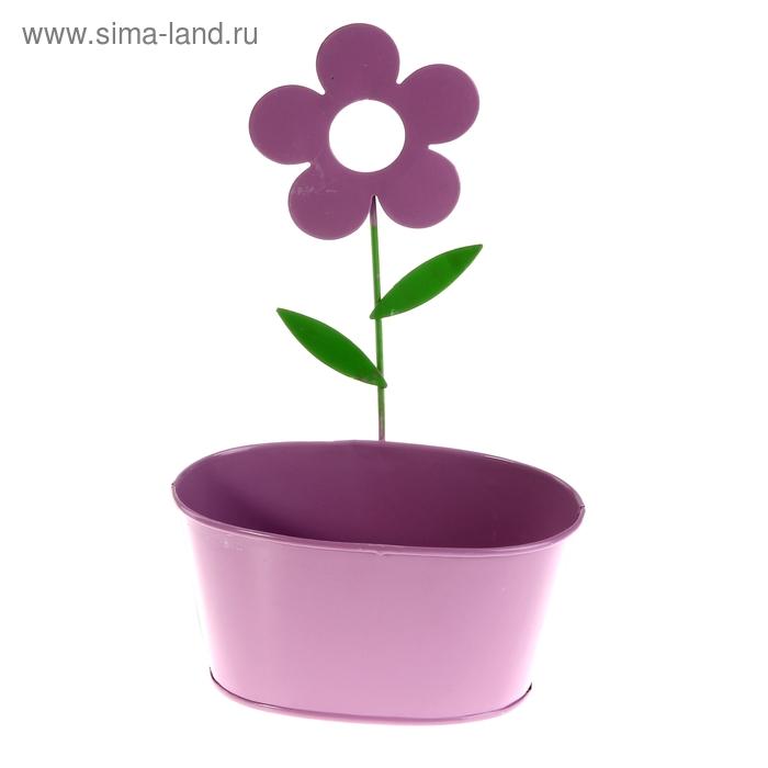 """Кашпо оцинкованное настенное """"Цветок"""" овальное, фиолетовое"""