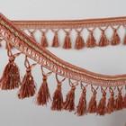 Тесьма с кисточками, цвет коричневый/бежевый