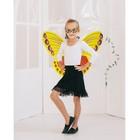 """Карнавальный набор """"Бабочка"""", 2 предмета: крылья, маска, 3-5 лет"""