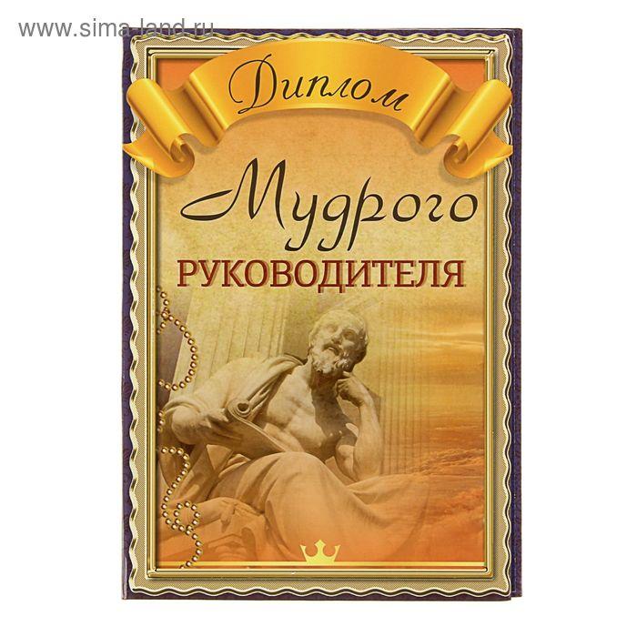 """Диплом """"Мудрого руководителя"""" Сини фон, наставник"""