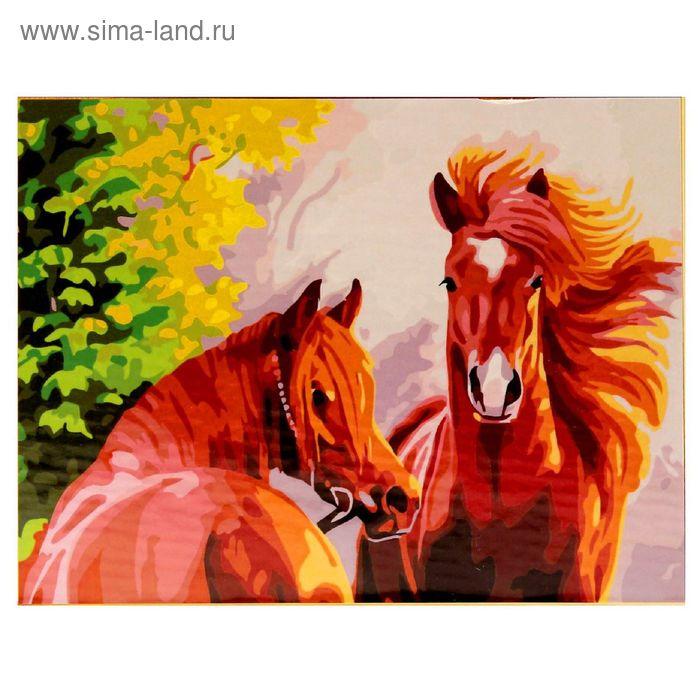 """Роспись по холсту """"Пара коней"""" по номерам с красками по 3 мл+ кисти+инструк-я+крепеж 40*50 137984"""