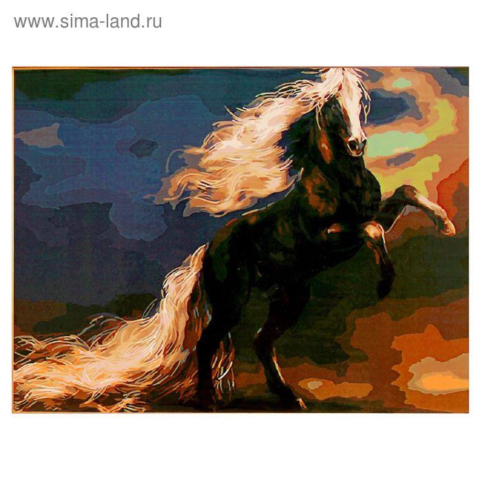 """Роспись по холсту """"Конь на дыбах"""" по номерам с красками по 3 мл+ кисти+инструк-я+крепеж 40*50 137"""