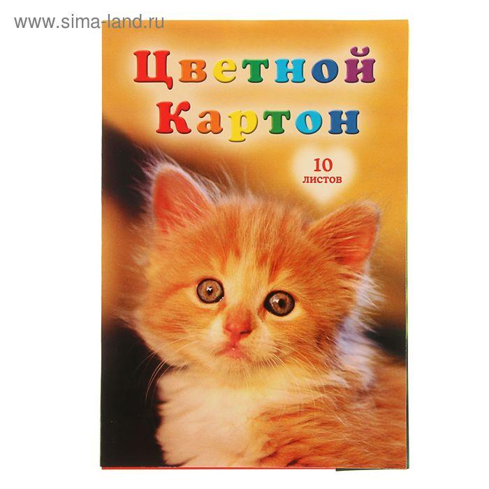 """Картон цветной А4, 10 листов, 10 цветов """"Котенок"""""""
