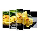 Модульная картина на подрамнике «Жёлтые орхидеи на камнях», 125 × 80 см