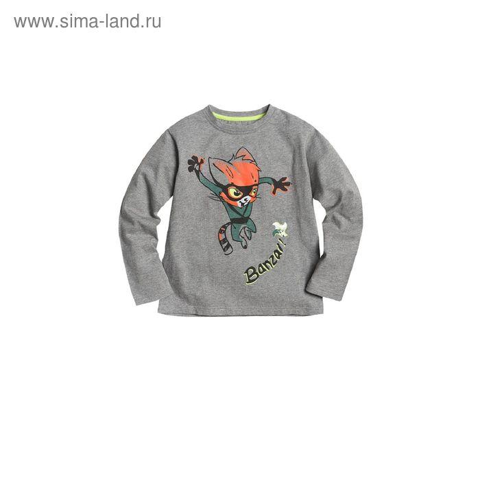 Джемпер для мальчиков, 4 года, цвет Серый BJR373