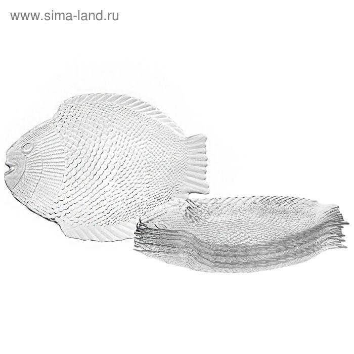 "Набор блюд 26х21 см ""Рыба. Marine"", 6 шт"