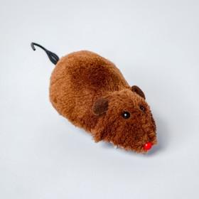 Игрушка заводная «Мышка», цвета МИКС