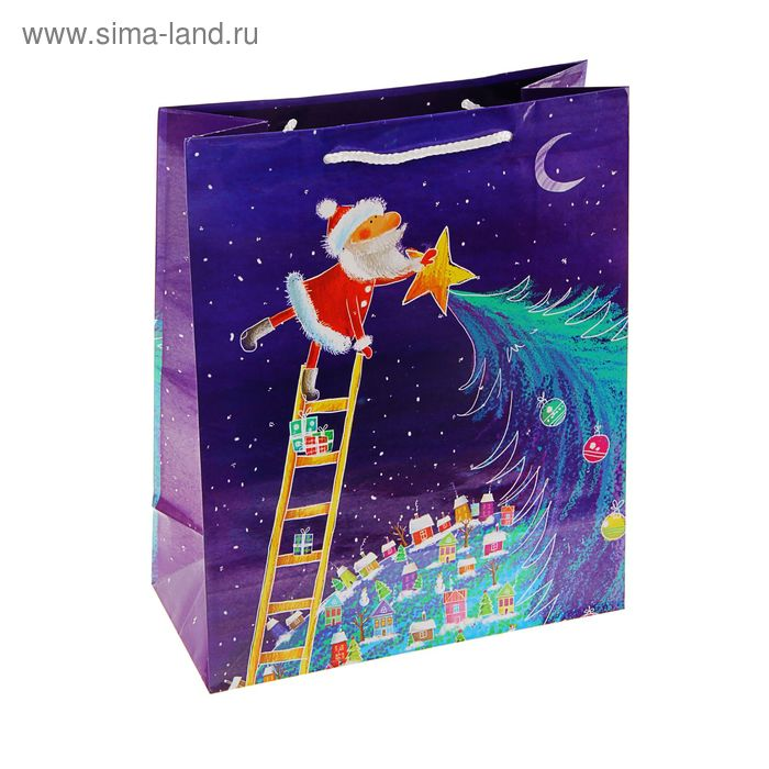 "Пакет подарочный ""Веселый Дед мороз"", 23 х 17.8 х 9.8 см"
