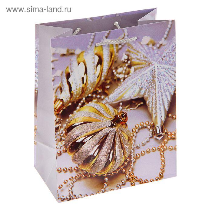 """Пакет подарочный """"Пряничный праздник"""", 14.5 х 11.5 х 6.5 см"""