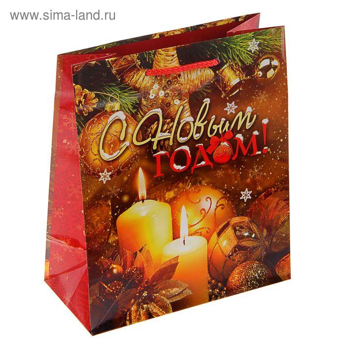 """Пакет подарочный """"Пожелание"""", 24 х 20 х 10.2 см"""